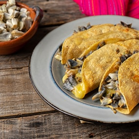 Traditional Mexican foods ideal for vegetarians