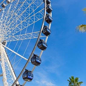 Scenic Tower and Ferris Wheel
